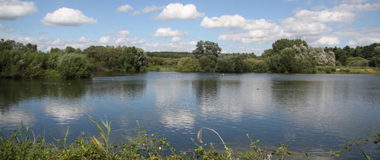 lackford-lakes-suffolk-wildlife-trust