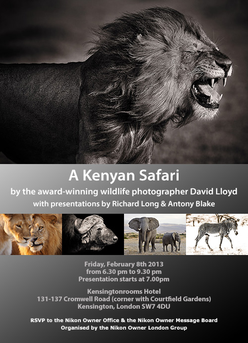 no-africa-kenya-collage