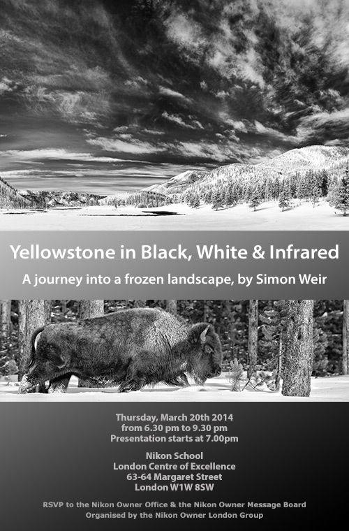 frozen-landscape-yellowstone